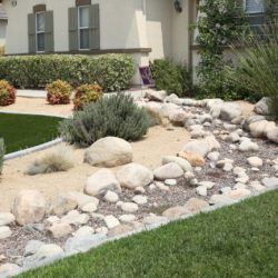 Water Conservation Tips for Your Landscaping